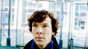 Stop looking at me with your eyes of perpetual disdain, Benedict Cumberbatch.